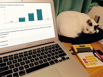 Running a remote retro with the help of Google Forms (and a cat).