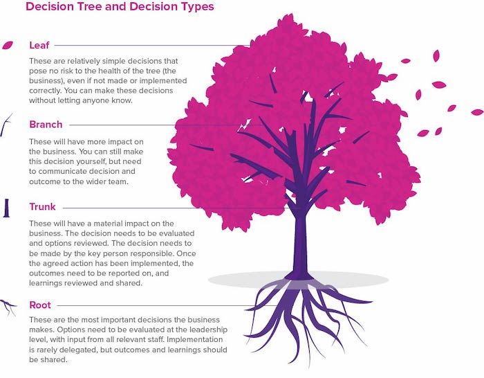 Decision tree graphic explaining the difference between leaf, branch, trunk and root decisions.